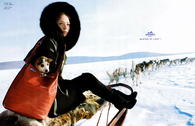 hermes-dogsled-winter