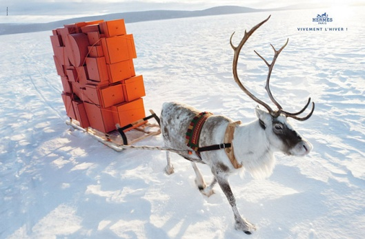 hermes-winter-reindeer