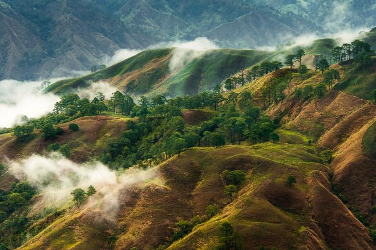 LucindaDennis_Spicedfox_Cordilleras_7993_49482